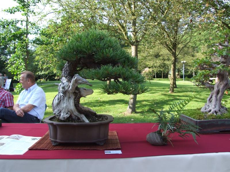 EUK @ Japanse tuin Hasselt 02-06-2012 077