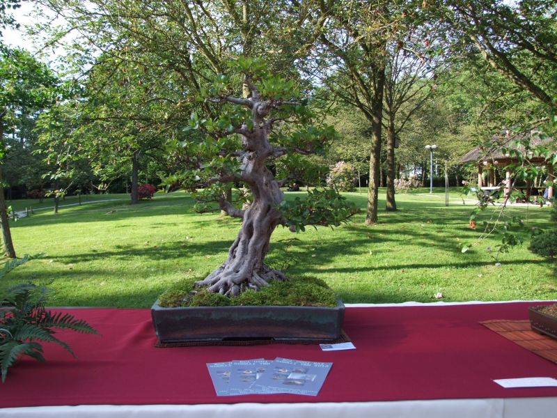 EUK @ Japanse tuin Hasselt 02-06-2012 078
