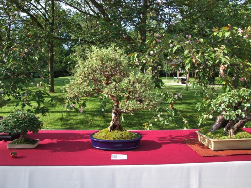 EUK @ Japanse tuin Hasselt 02-06-2012 083