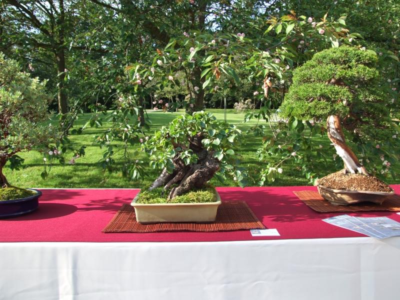 EUK @ Japanse tuin Hasselt 02-06-2012 084