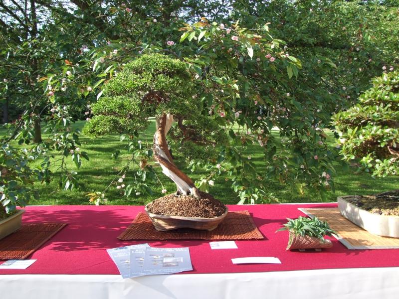 EUK @ Japanse tuin Hasselt 02-06-2012 085