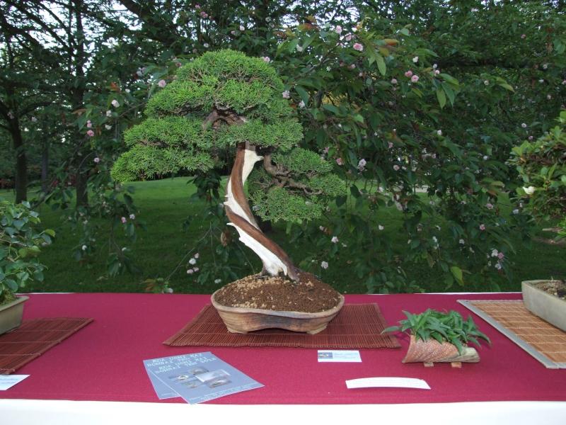 EUK @ Japanse tuin Hasselt 02-06-2012 115