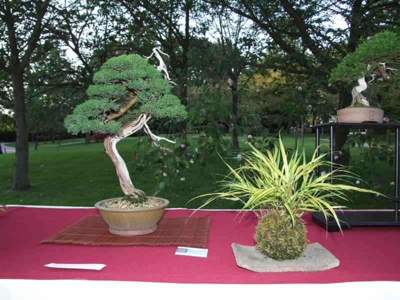 EUK @ Japanse tuin Hasselt 02-06-2012 119