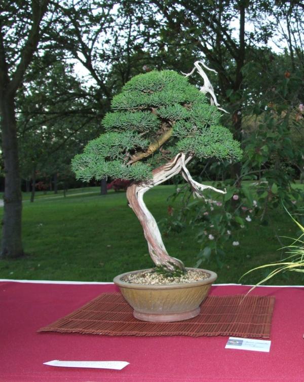 EUK @ Japanse tuin Hasselt 02-06-2012 120