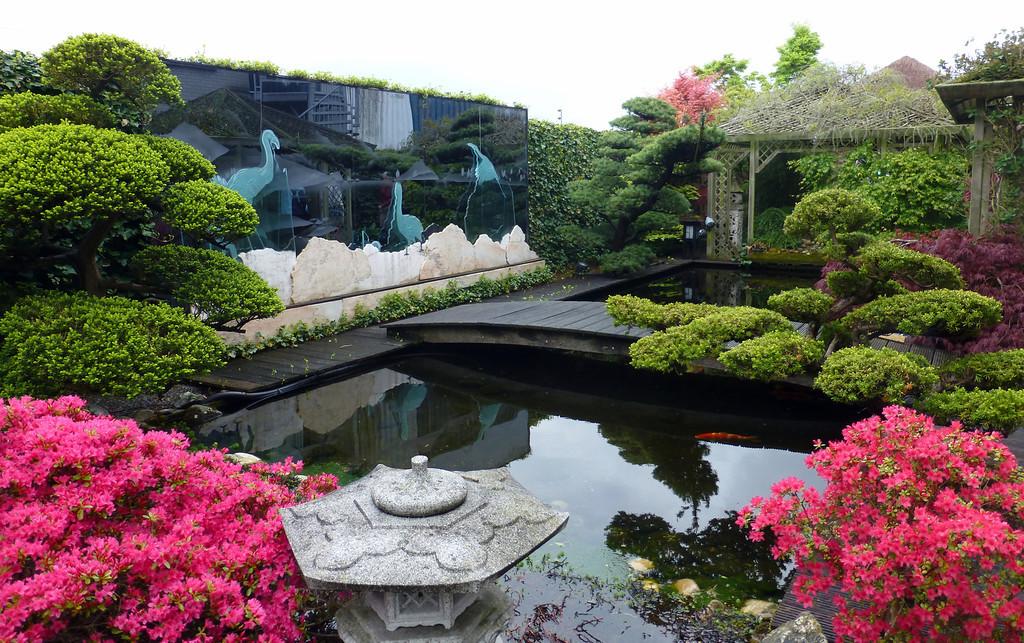 Yokoso japanese gardens martin huizer for Tuinen aanleggen foto s