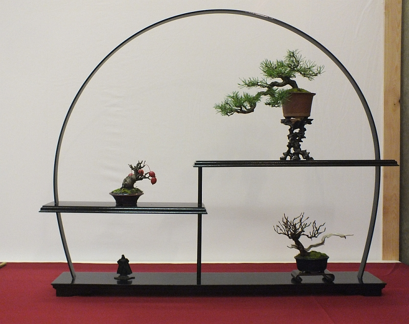 EUK Bonsai Ten 2013 045aa