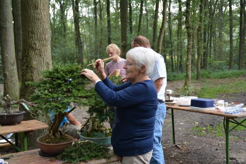 EUK Bonsai Kamp Veldhoven 021