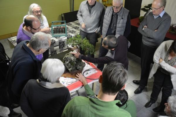 Demo rotsbeplanting JP Polmans 1 december 2014 009