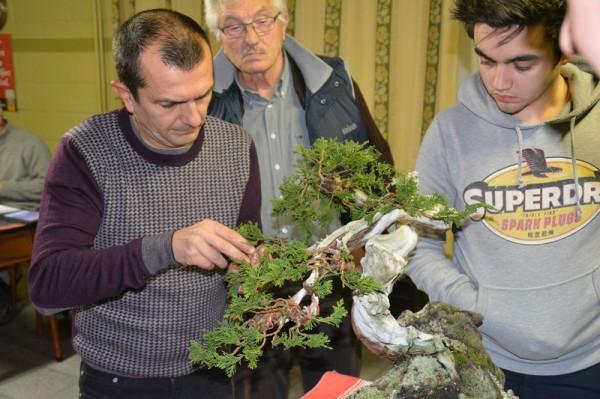 Demo rotsbeplanting JP Polmans 1 december 2014 013