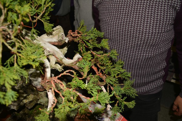 Demo rotsbeplanting JP Polmans 1 december 2014 014