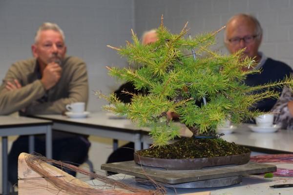 EUK vergadering Larix & Pinus project 5 oktober 2015 011