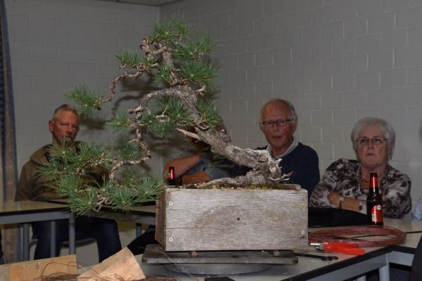 EUK vergadering Larix & Pinus project 5 oktober 2015 035