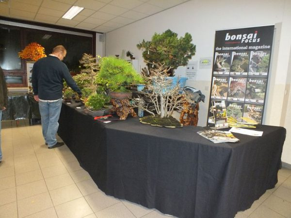 EUK Bonsai Ten 2013 handelaars 002