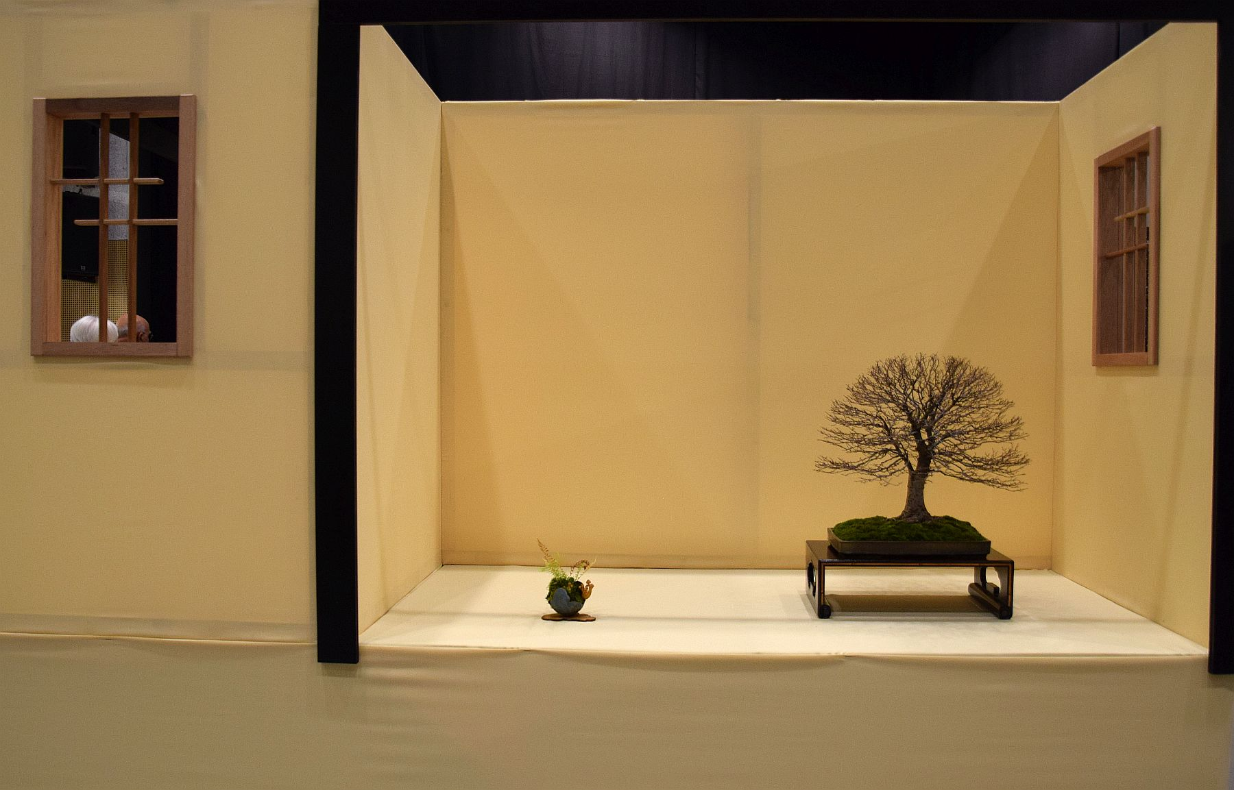 euk-bonsai-ten-2016-club-bonsai-126