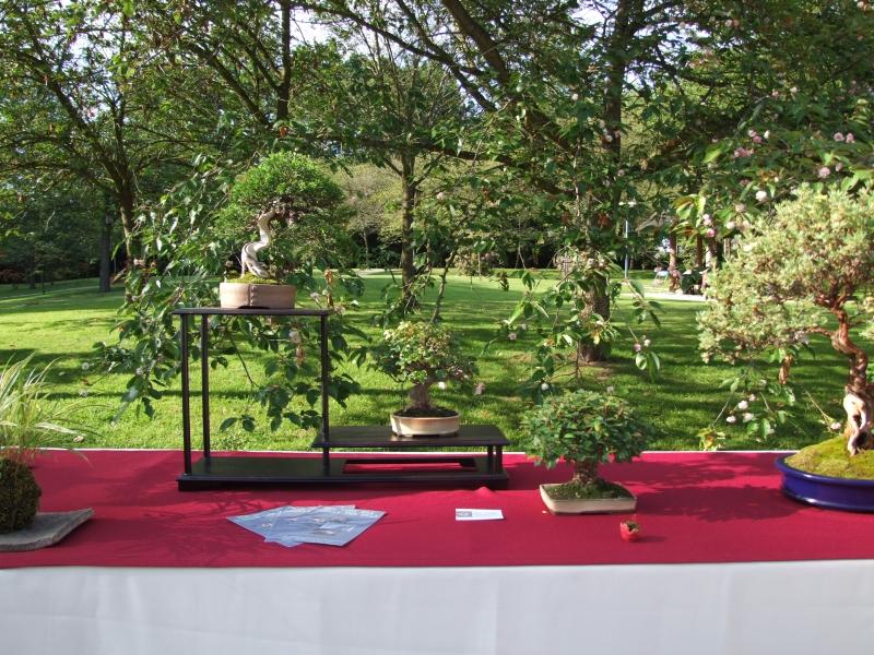 EUK @ Japanse tuin Hasselt 02-06-2012 082