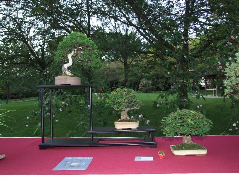 EUK @ Japanse tuin Hasselt 02-06-2012 118