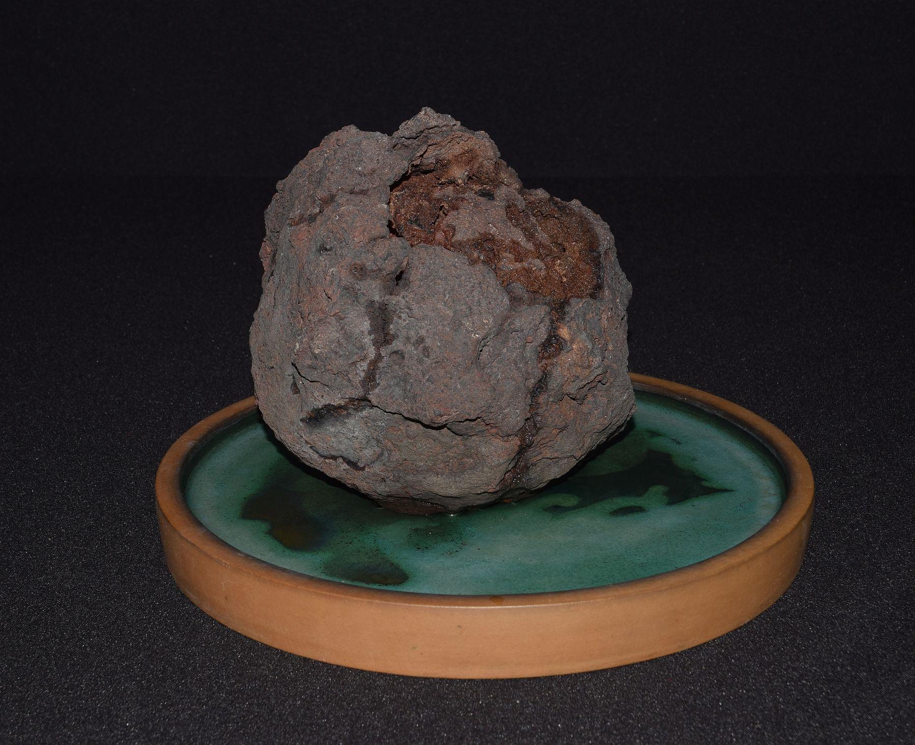 bonsai-museum-luis-vallejo-009