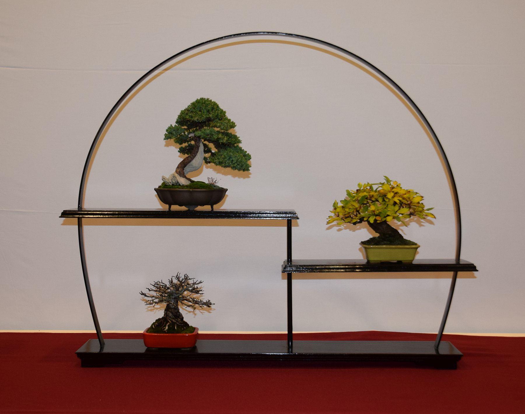 euk-bonsai-ten-2016-club-bonsai-080